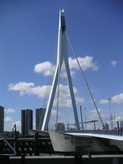 Erasmus Cable Stayed Bridge